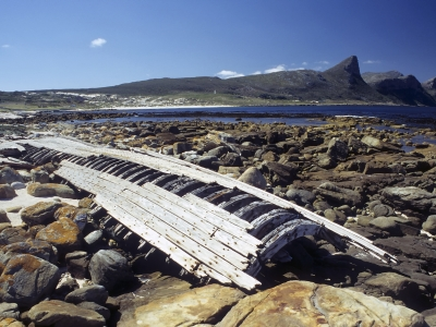 Shipwreck name: Tania