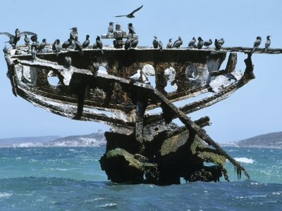 Shipwreck name: Unknown (Saldanha whaler)